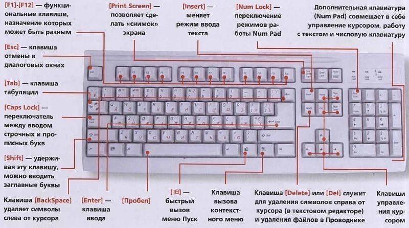 Клавиатура компьютера. Сочетание клавиш